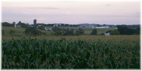 Rural scene in Lancaster County PA 7/29/10