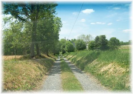 Long gravel farm lane