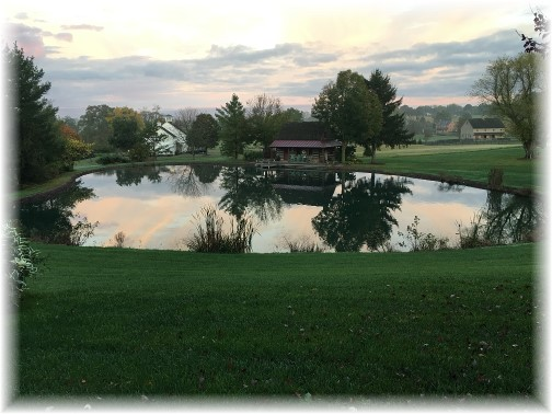 Meadow View Road pond 10/10/17 (click to enlarge)