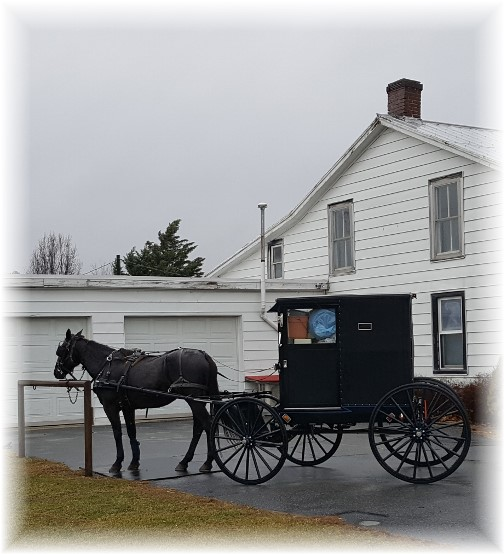 Old-order Mennonite buggie 12/29/16