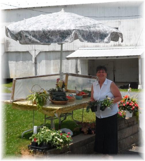 Roadside produce stand 06-20-13