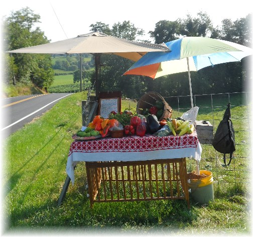 Roadside produce stand, Lancaster County, PA 8/20/13
