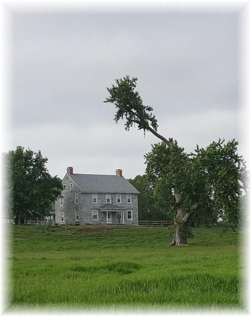 Rutt farmhouse 5/29/17
