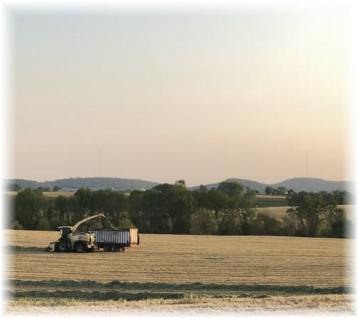 Rye harvest 5/9/18