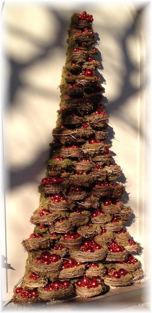 Longwood Gardens birdnest tree 12/19/14