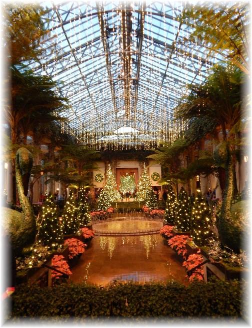 Display at Longwood Gardens 12/19/14