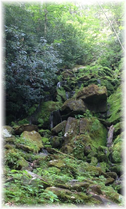 Lehigh River Gorge waterfall, Poconos, PA 5/30/15