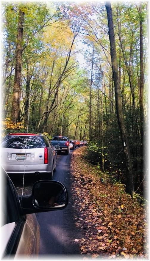 Stony Valley rail grade traffic 10/15/17