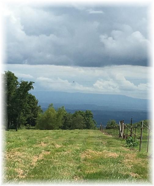 Arkansas mountain view 8/7/17
