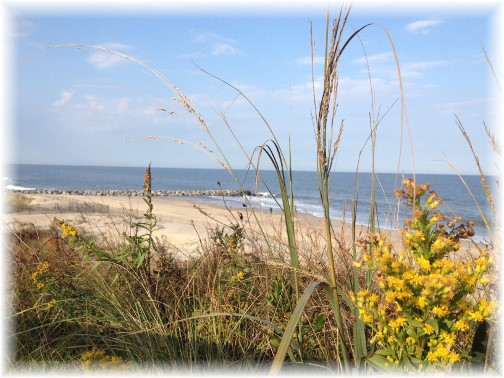 Seaview at Cape Henlopen