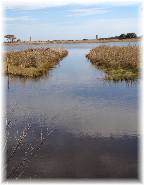 Gordon Pond tidal marsh with towers in background 10/8/15