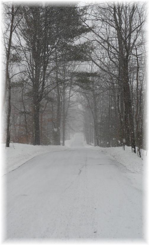 Snowy mountain road 2/9/14