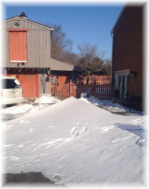 Winter blast 2/15/15 drifts