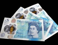 Pound Recovers on Johnson Health News
