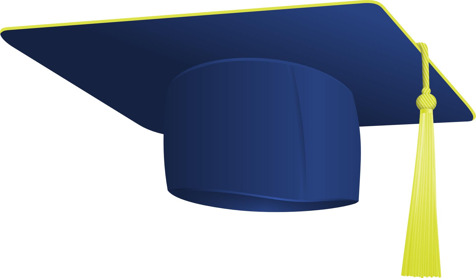 Blue hat-cartoon cap vector