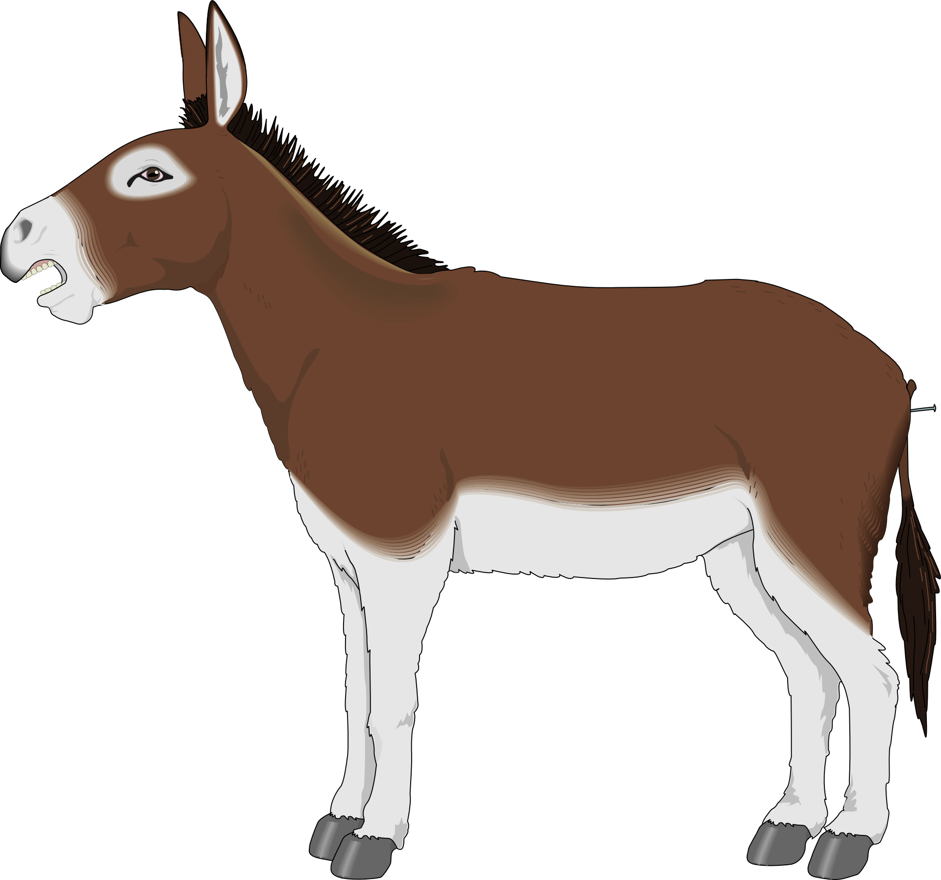 Cartoon animal,brown donkey vector