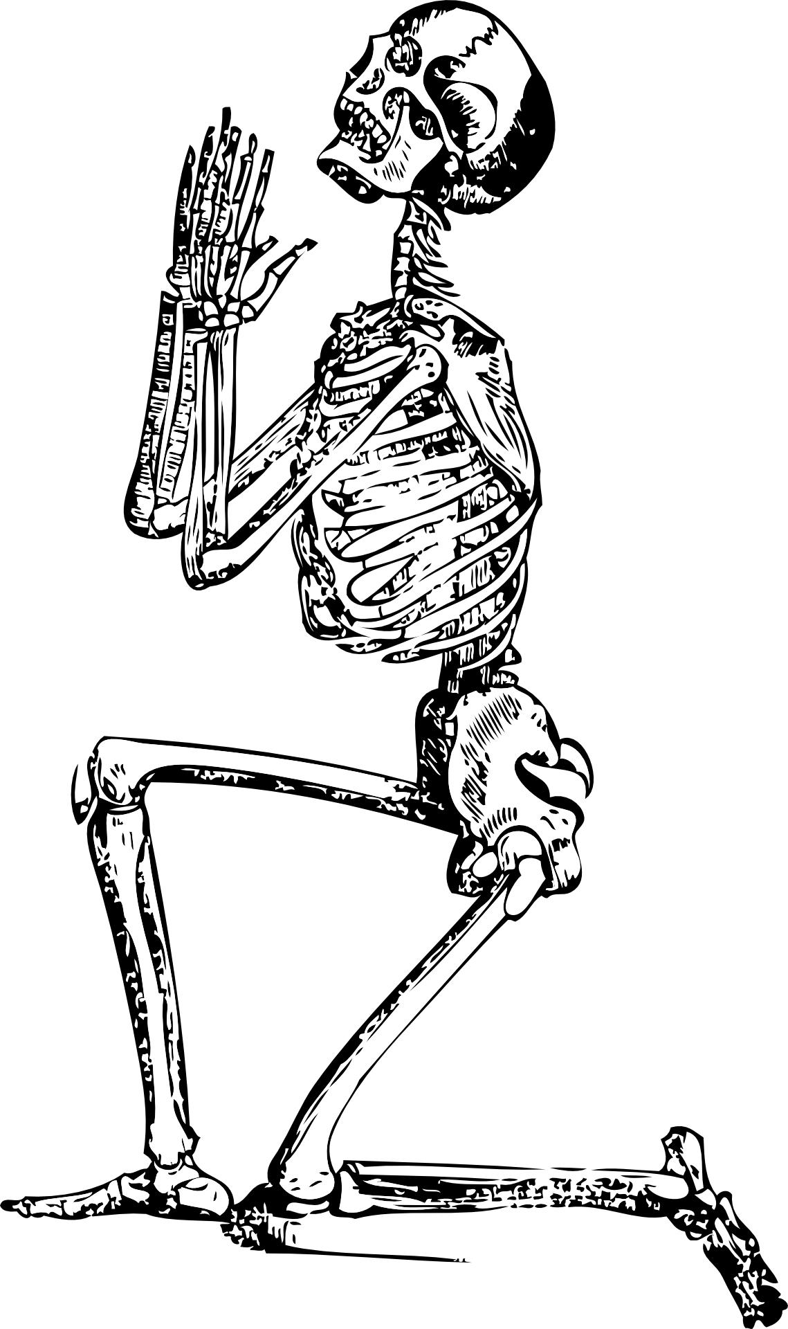 Hand drawing,human skeleton,prayer & supplication vector