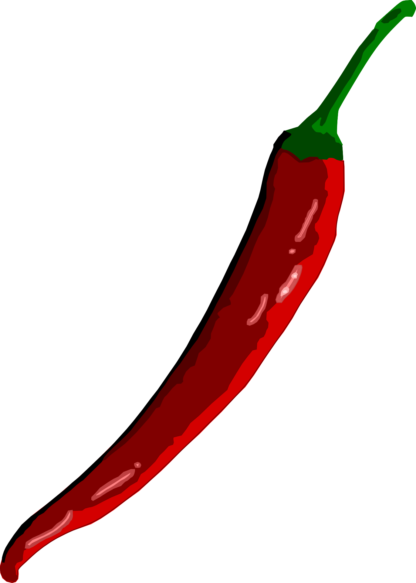 Red chilli vector