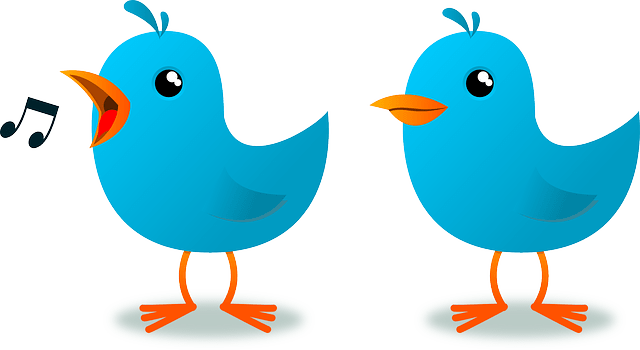 blue cartoon birds vector-symbol of twitter