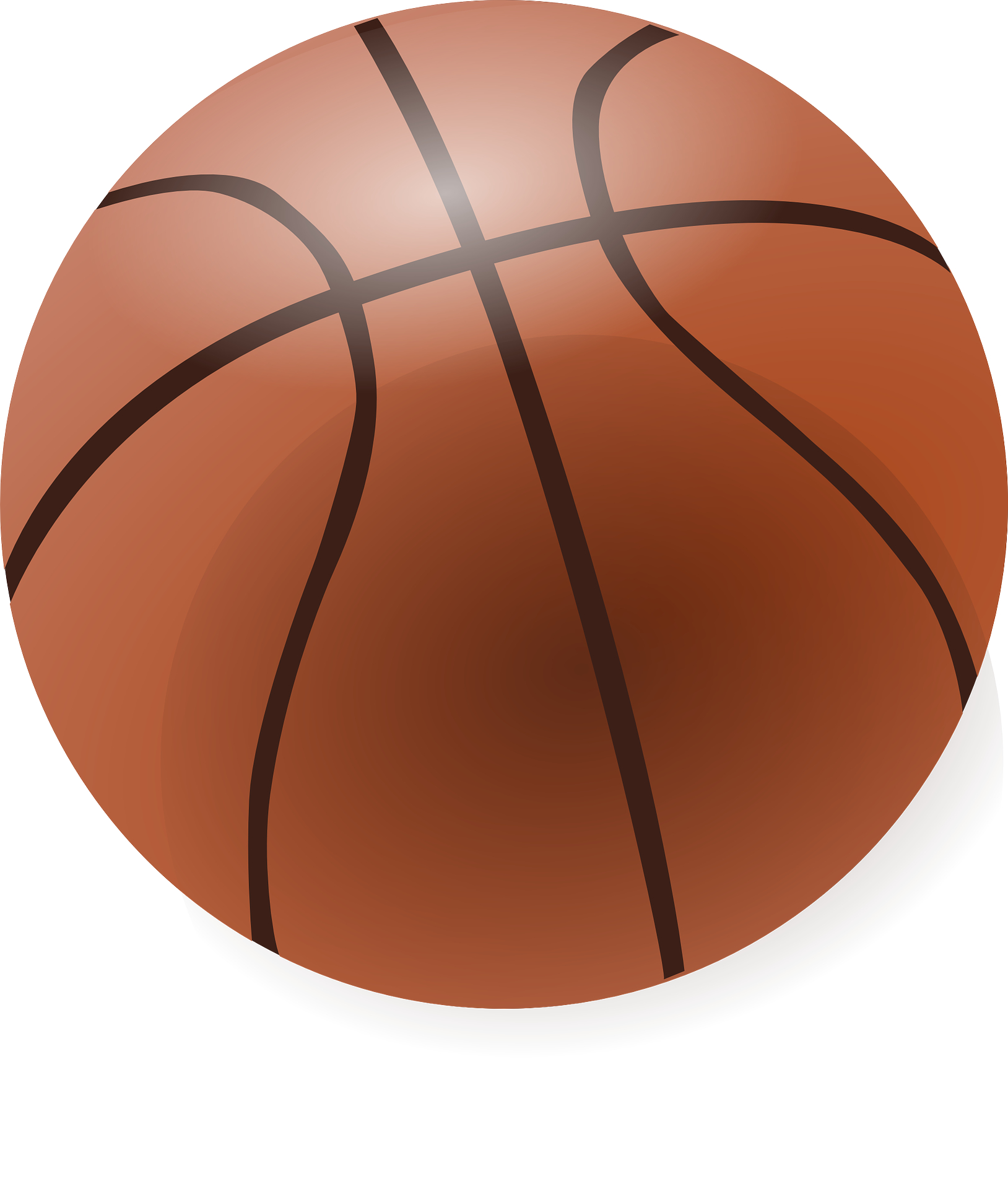 brown basketball vector