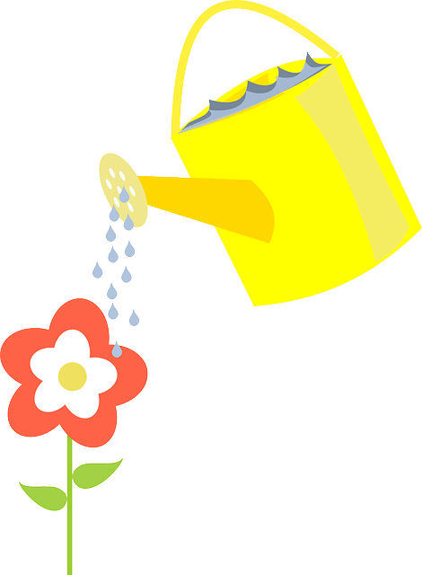 water the flowers vector