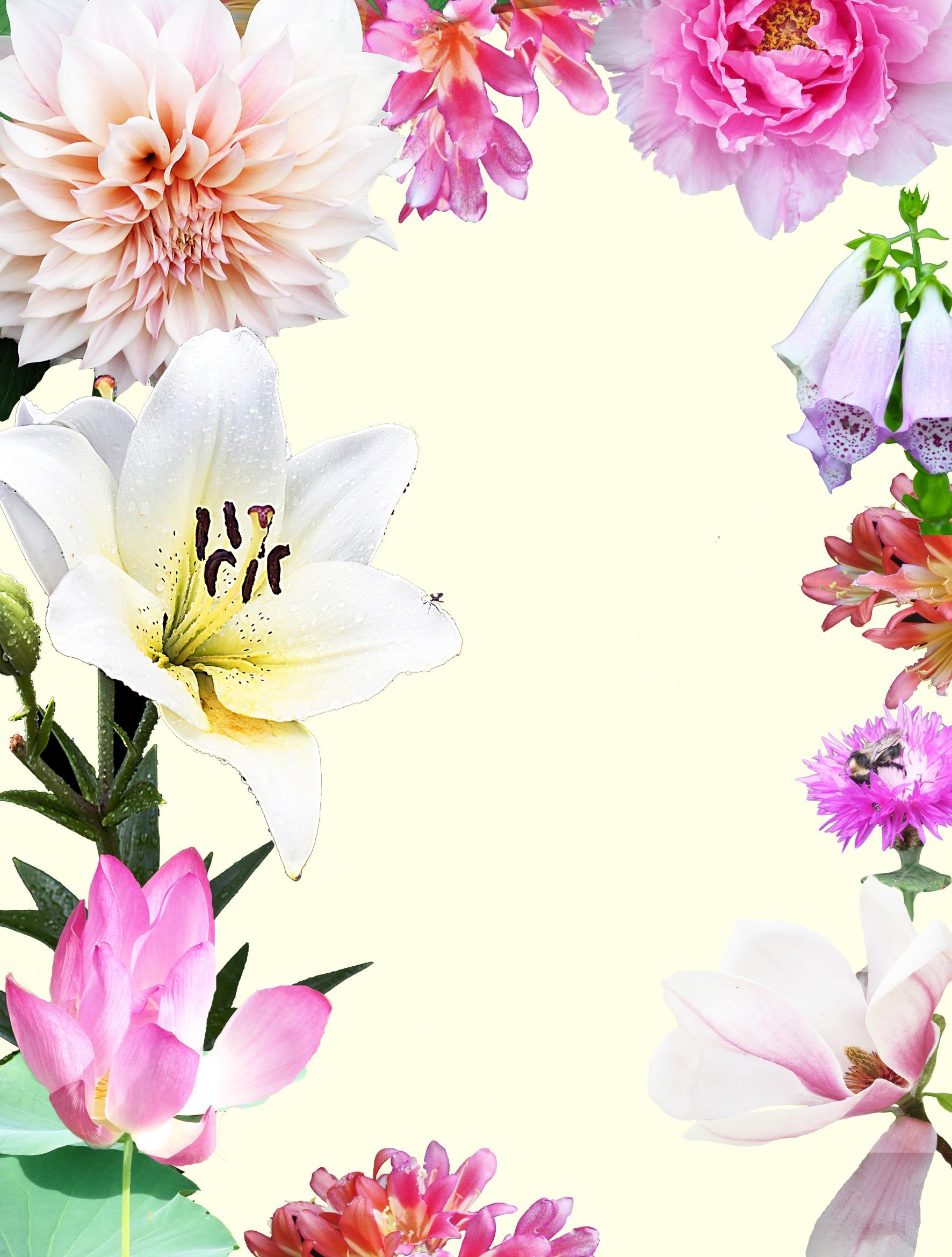 Painting- flower-dahlia-lotus-lily