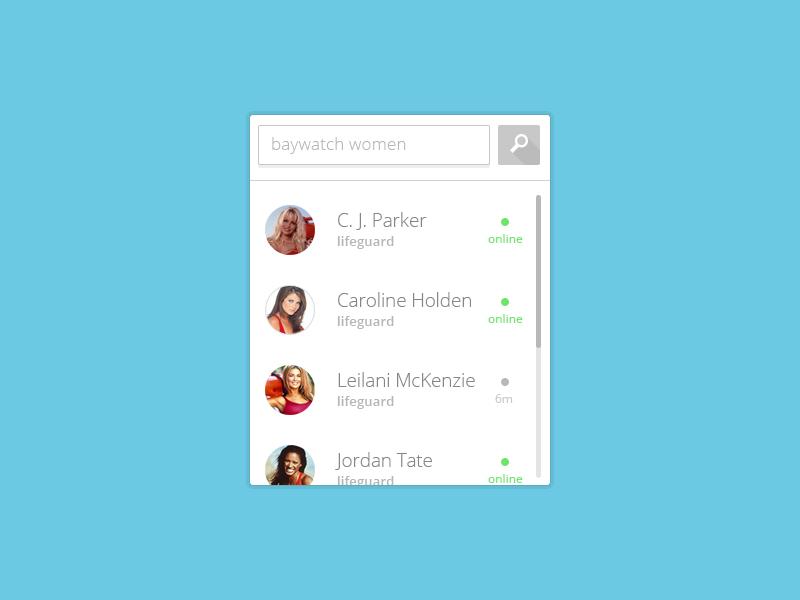 Website Widget Freebie For Searching Profiles