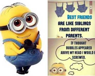 36 Funny Minions Quotes You're Going To Love