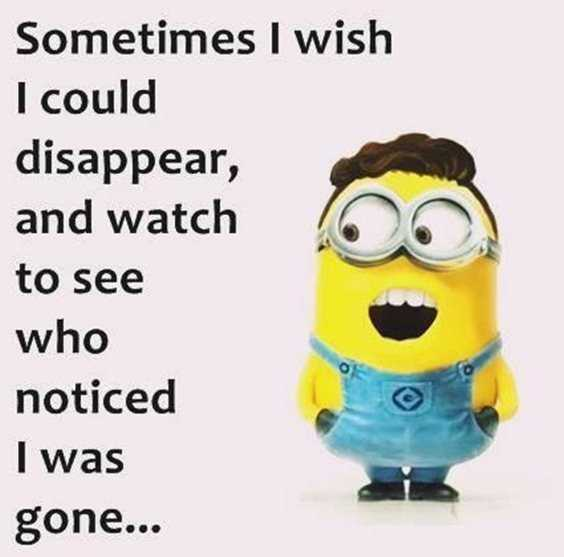 57 Funny Minion Quotes Of The Week And Funny Sayings 1