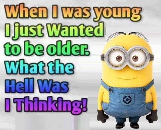65 Best Funny Minion Quotes And hilarious pictures to laugh 4