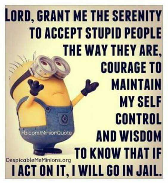 Top 97 Funny Minions quotes and sayings 8
