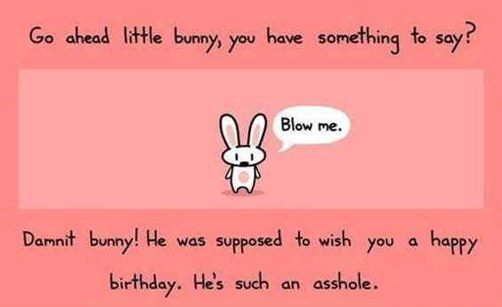 42 Happy Funny Birthday Images Funny Birthday Pictures 13