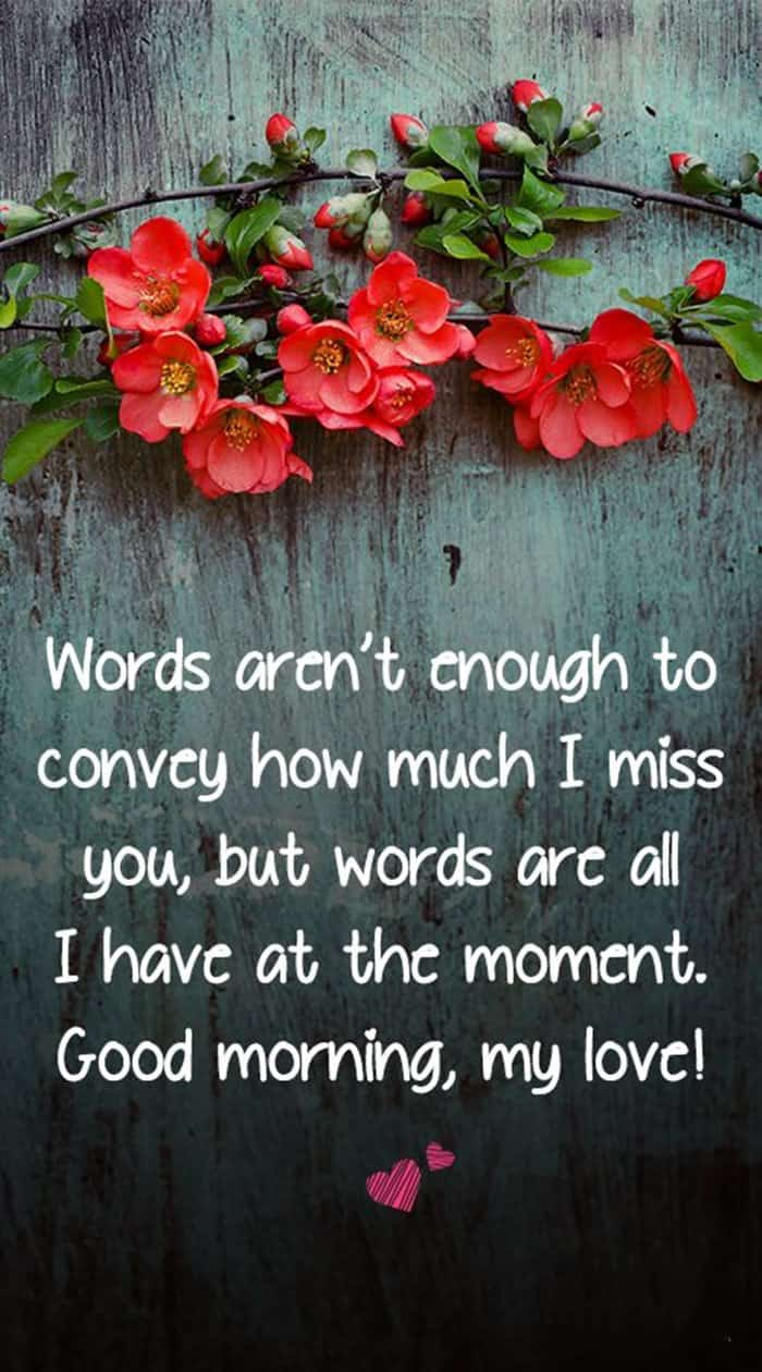35 Good Morning Love Quotes For You to Life Sayings 4