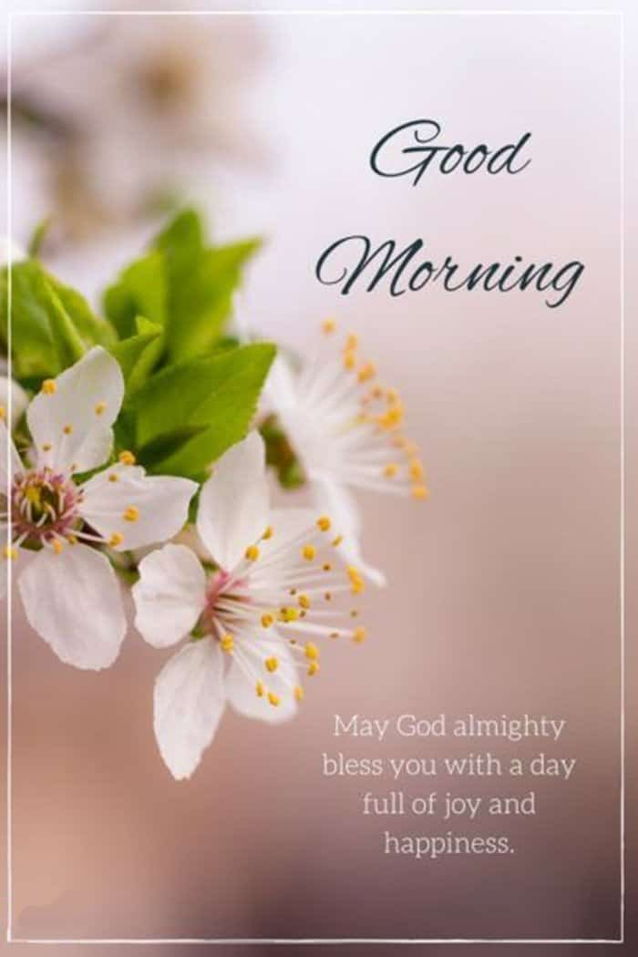 35 Good Morning Love Quotes For You to Life Sayings 5