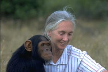 Jane Goodall On How To Reach Our Highest Potential