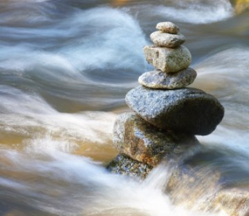A Beautiful Mind: A Conversation with Gina Sharpe