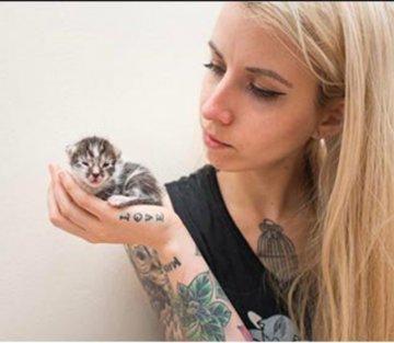 Hannah Shaw: Professional Kitten Rescuer