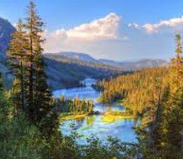 Wild Soul: A Nature Poem