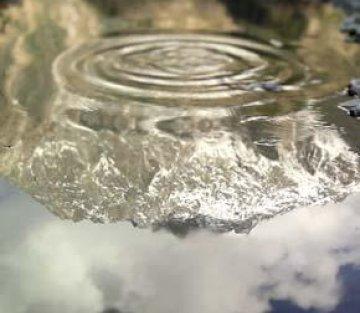 Deep Water-- A Conversation with Emmanuel Vaughan-Lee