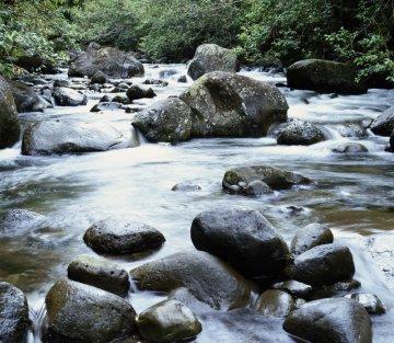 Taiji Quan: The Wisdom of Water