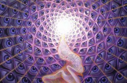 Cover image from Rick Strassman's DMT: The Spirit Molecule - Art by Alex Grey (alexgrey.com)