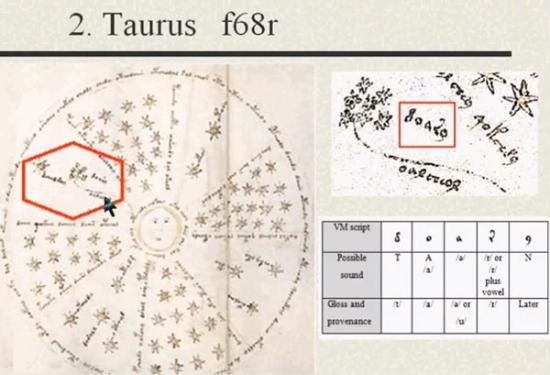 Taurus in the Voynich Manuscript