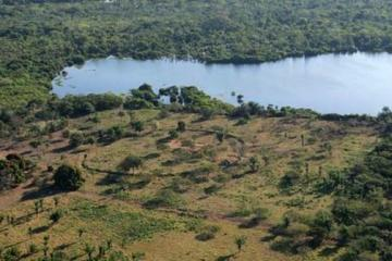 Ancient Earthworks in Amazon