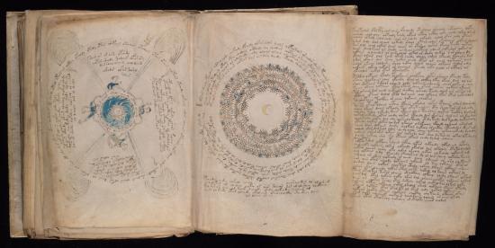 Voynich Manuscript Fold-out