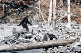 Patterson Gimlin Bigfoot