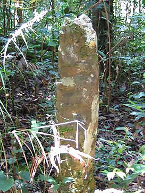 Standing stone in the Borneo jungle