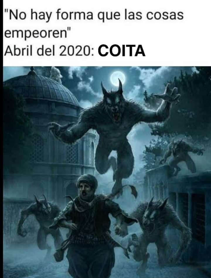 Coita werewolf meme
