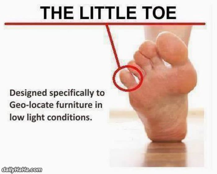 specially designed Little Toe Function