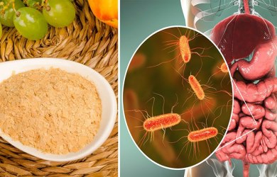 brewers yeast benefits