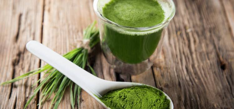 Science-Based Health Benefits of Wheatgrass